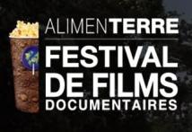 visuelfestivalsite2