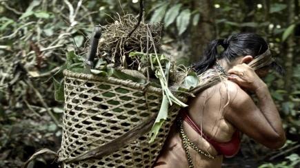 Yanomami carregando cesto cor (1).jpg