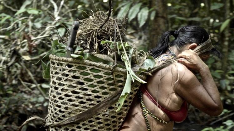 Yanomami carregando cesto cor (1)
